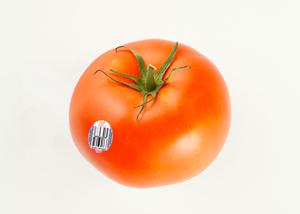 Organic Beefsteak Tomatoes
