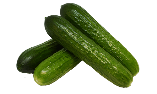 Artisan Series Cucumbers