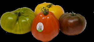 Hacienda Special Reserve Tomatoes