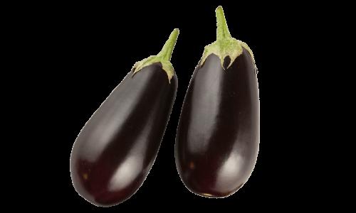 Traditional Series Eggplants